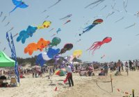 Gold Coast International Festival Of Kites