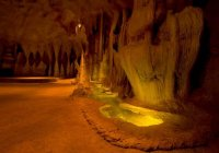 Glow Worm Caves